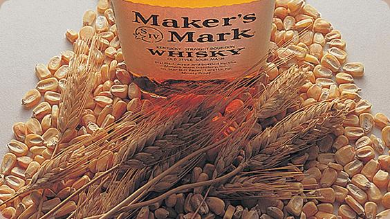 六条大麦のイメージ